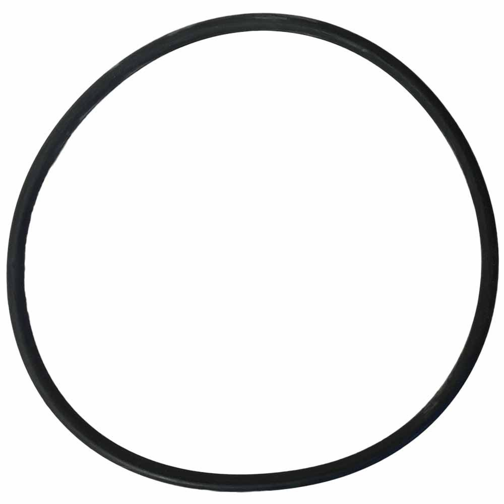 Replacement O-ring for Big Blue Filter Housings