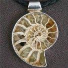 Unique Ammonite Fossil Pendant In Silver - Native American Jewelry - Tribal Jewelry
