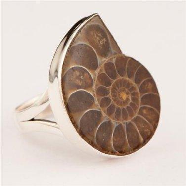 Ammonite Ring - Fossil Jewelry - Tribal Jewelry - Ethnic Jewelry - Unisex Jewelry