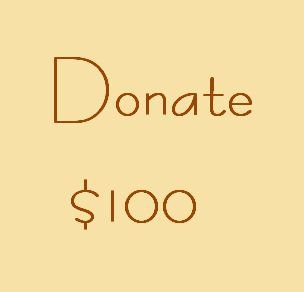 Donate in $100 Increments