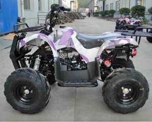 New Style Fully Auto With Reverse ATV (Quad)