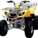 Full Size Utility Style ATV (Quad)