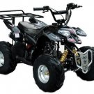 New Polaris Style With Rear Rack ATV (Quad)