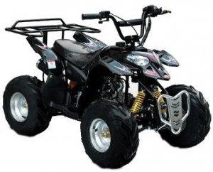 New Polaris Style With Rear Rack ATV (Quad)