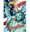 USA Freedom Throw