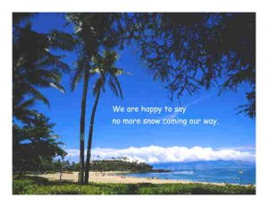 Palm Tree by Ocean Note Card