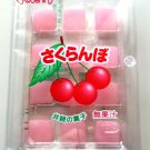 Cherry Flavor Mochi Candy- Japan Candy