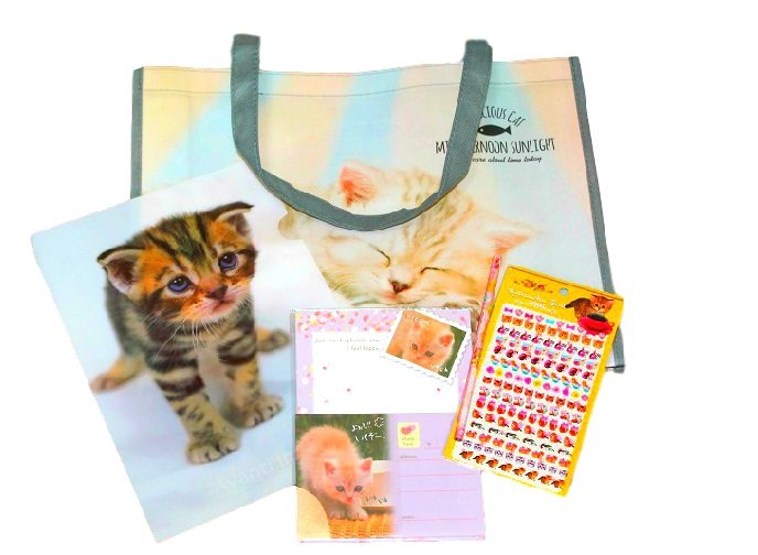Cute Cats Goods Suprise Set : Full of Kawaii Cat and Kittens Goods!