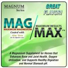Mag-Max by Oxy-Gen for Horses, 50#, The Total Package: Joint, Lung, Ulcer care