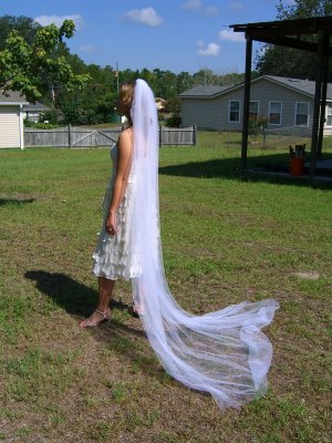 Cut Cathedral Veil