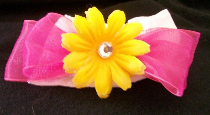 Bright Yellow Daisy