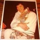 Elvis Presley Original Colored Concert Photo  8 x 10