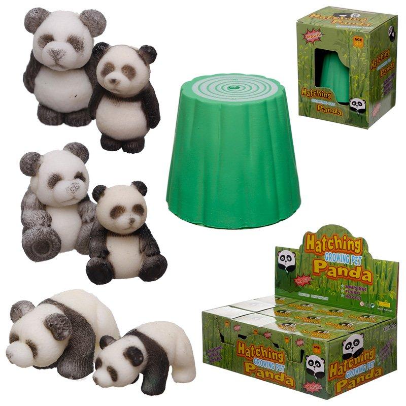 Fun Kids Hatching Panda