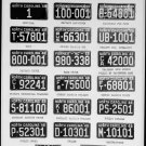 1948 North Carolina NC License Plate Tags Blotter Copy