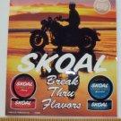 """VINTAGE 1993 SKOAL FLAVORS MOTORCYCLE DOOR/COUNTER DECAL 6X7"""""""