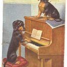 FUNNY DOGS SING & PLAY PIANO VINTAGE GERMAN COLOR PC