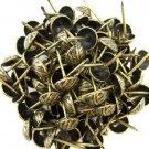 "C.S. Osborne Overlap Nail Tacks Antique Brass 3/4"" 100pk [Office Product]"
