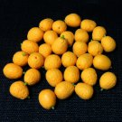 20 Oranges Orange Round Fruit Fruits Small Tiny Food Clay Fimo Miniature Dollhouse Jewelry Beads