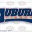 Auburn License Plate #31358