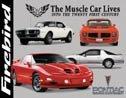 Pontiac Firebird tin sign #890