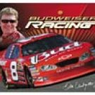 Dale Earnhardt Jr Nascar  tin sign #1257