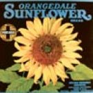 Sunflower tin sign #531