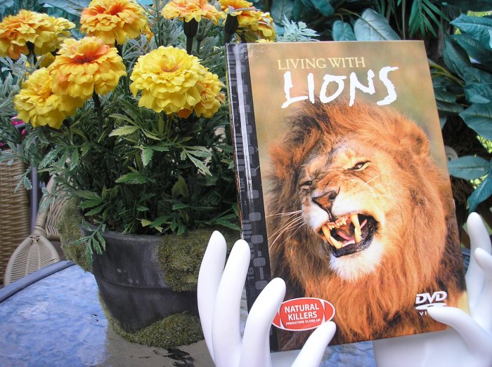 NATURAL KILLERS - PREDATORS CLOSE-UP Series: LIVING WITH LIONS DVD VIDEO and BOOK!