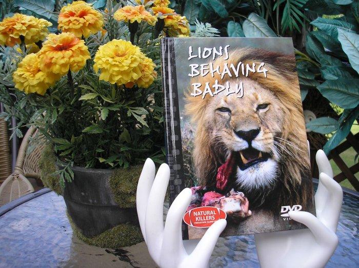 NATURAL KILLERS - PREDATORS CLOSE-UP Series: LIONS BEHAVING BADLY DVD VIDEO and BOOK!