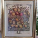 Robert Fruber The Twelve Months of Fruit 1732 April Framed - The Hope Collection - Sealed!