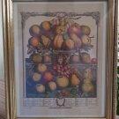 Robert Fruber The Twelve Months of Fruit 1732 December Framed - The Hope Collection - Sealed!