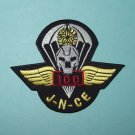 ARMY 5th Bn 19th Special Forces Group Airborne 100 Jump SFG-788 Military Patch