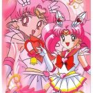 Sailor Moon Super S World 4 Carddass EX4 Regular Card - N2