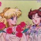 Sailor Moon Seika Note Movic Photo Card #0894-D