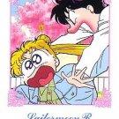 Sailor Moon R Hero 1 Regular Card #55