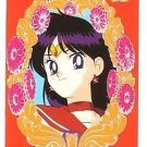 Sailor Moon S Carddass W Regular Cel Cards #69