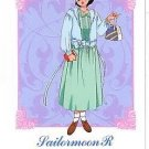 Sailor Moon R Hero 1 Regular Card #53