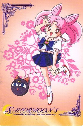 Sailor Moon S Hero 4 Regular Card #447