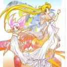 Sailor Moon Super S Memorial Laser Disc LD Toei #L29