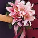 Stargazer Lilly Bouquet