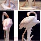 German Porcelain Pink Flamingo Excellent Condition