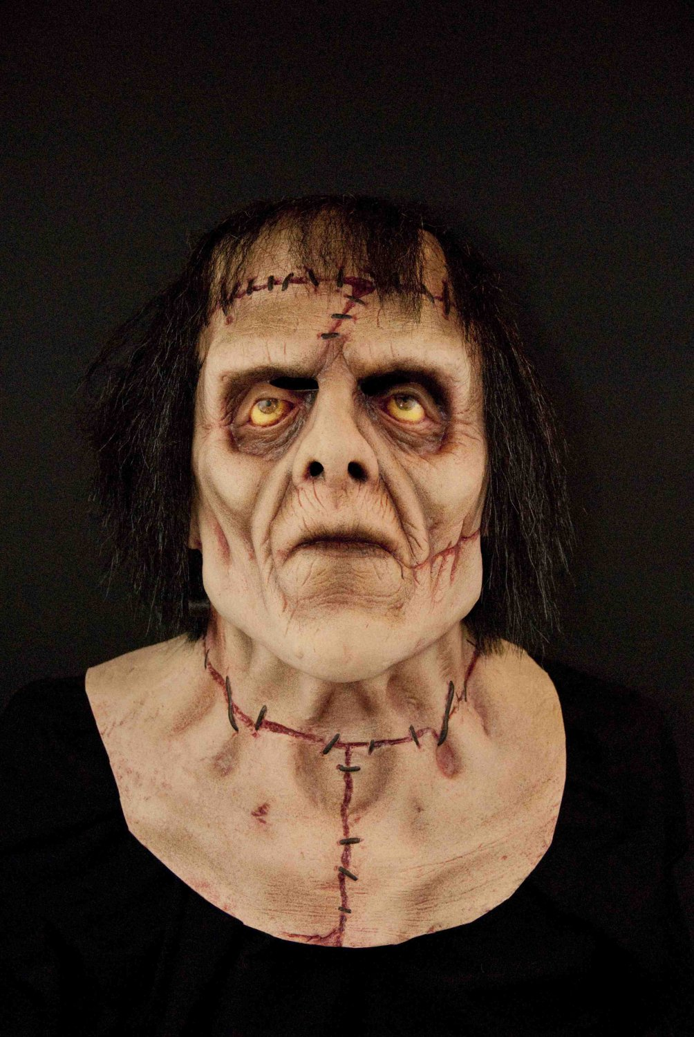 Frankenstein The Monster Reanimated Corpse Scary Halloween Mask
