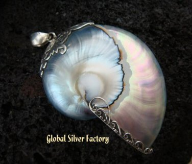 925 Silver Grey Nautilus Shell Pendant SP-372-KT