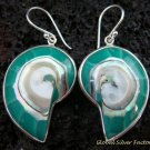 Sterling Silver Blue Nautilus Shell Earrings ER-538-KT