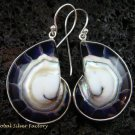 Sterling Silver Purple Nautilus Shell Earrings ER-537-KT