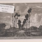 Avenue of Trees, Middelharnis - Vintage Perry Pictures