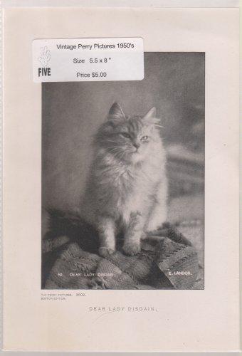 Dear Lady Disdain - Vintage Perry Pictures