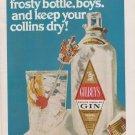 Gilbeys Dry Gin - Frosty Bottle