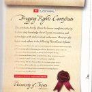 University of Toyota Magazine Advertisement