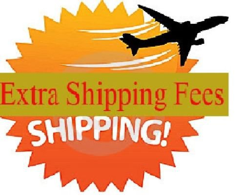 Extra Shipping Fee for fast express
