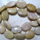 Natural 20x15mm FOSSIL Oval CORAL (5 JUMBO Beads) A+
